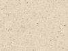 white-dune