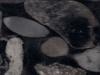 negro-marinace