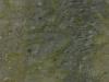 verde-bamboo
